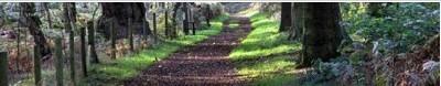 cropped-2011-12-19_123232.jpg