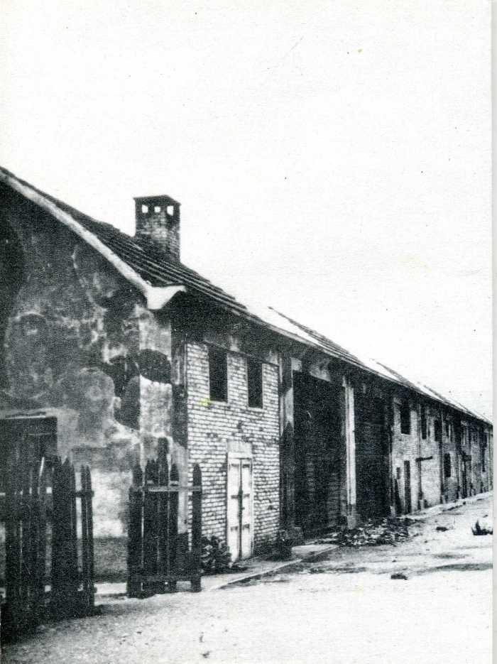 giacomozzi1993