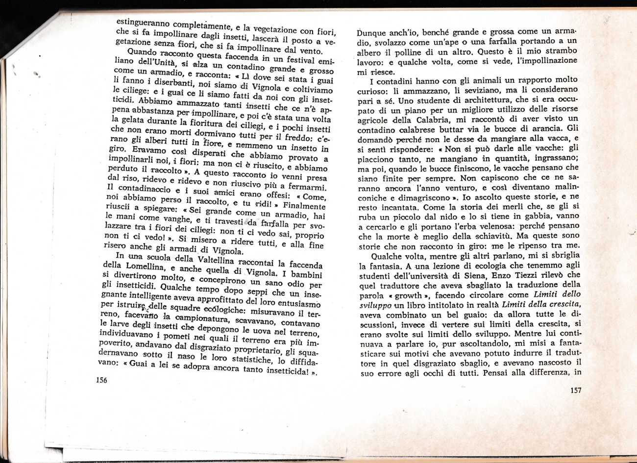 L CONTI NOTE MAGICO3588